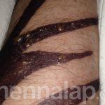 Fekete henna